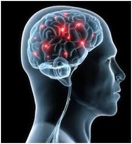 pesticidi aumentano rischio di Parkinson