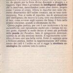 PARADISO CANTO II  SINTESI TEMATICA